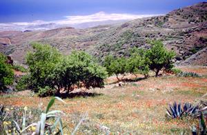 Ausflug auf Gran Canaria Blick auf Arinaga