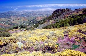 Ausflug auf den Kanaren mit Blick vom Bergland auf Las Palmas de Gran Canaria