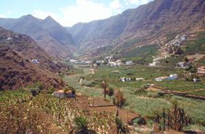 Ausflug ins Tal bei Hermigua auf la Gomera