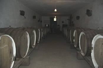 Weinkeller, Bodega Kanaren